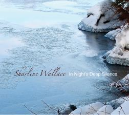 IN NIGHT'S DEEP SILENCE cover