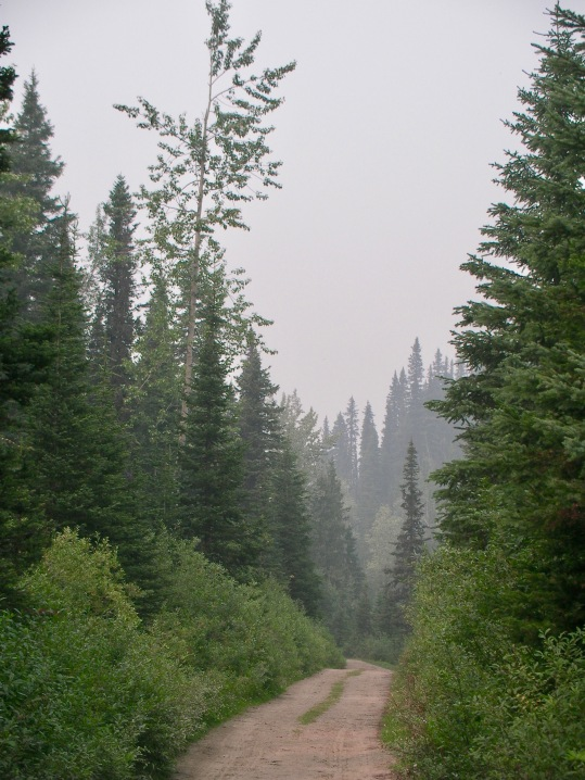 Cariboo Wagon Road